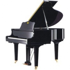 CASIO AP-80R Цифровое фортепиано