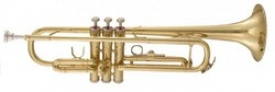 MAXTONE TTC236