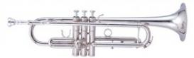 MAXTONE TTC235