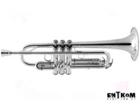 Труба Roy Benson TR-402CS