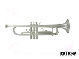 Труба Bb Roy Benson TR-202S