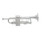 BRAHNER TR-3000S - Труба Bb - Копия BACH37