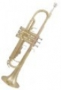 ROY BENSON TR-101 - труба
