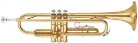 YAMAHA YTR-01 (M, MQ)