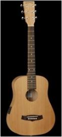 Вестерн гитара TANGLEWOOD TWR TE