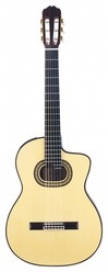 TAKAMINE TH90 CLASSIC SERIES