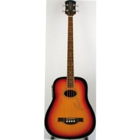 Бас-гитара EKO BA-4 Eq